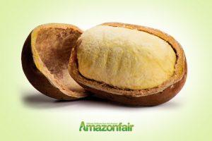 Amazonfair-570x400