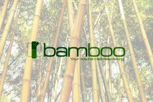 bamboo-570x400