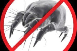 quarto-do-alergico-capa-anti-acaro-p-travesseiro-bebe-infantil-ou-adulto-100-algodao-especial-impermeavel-alergodream-1481940357169